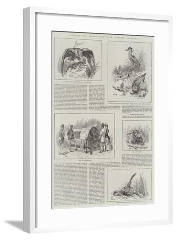 Colonial and Indian Exhibition, Western Australia-S^t^ Dadd-Framed Art Print