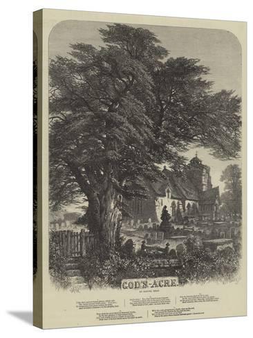 God's Acre-Samuel Read-Stretched Canvas Print