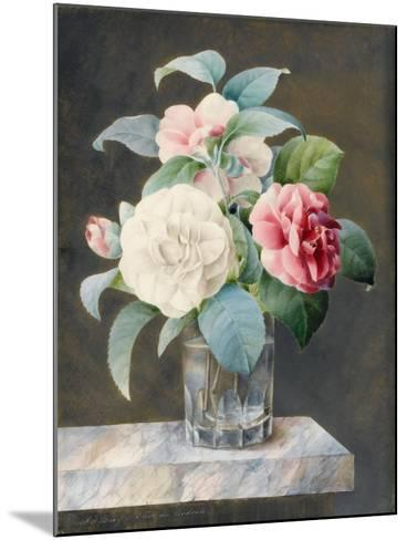 A Cut Glass Vase Containing White-Sarah Bray-Mounted Giclee Print