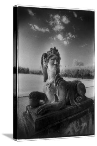 A Sphinx at Gross-Sedlitz, Heidenau-Simon Marsden-Stretched Canvas Print