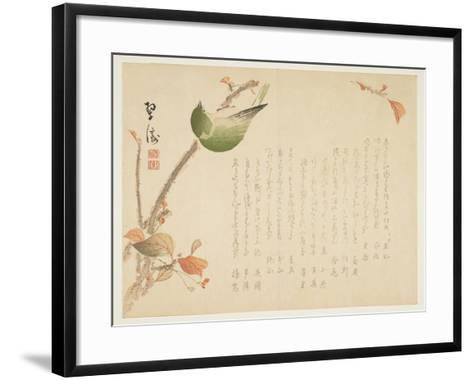 Japanese Nightingale Perched on a Branch- Suit?-Framed Art Print