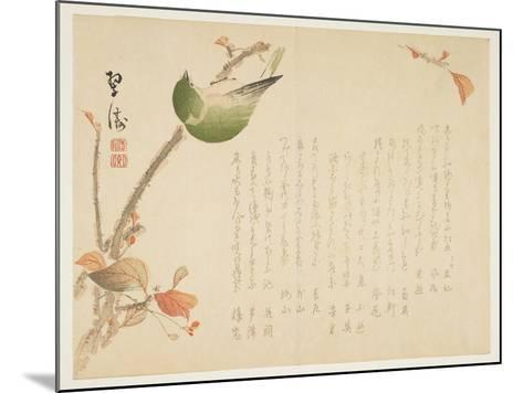 Japanese Nightingale Perched on a Branch- Suit?-Mounted Giclee Print