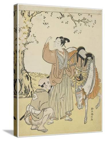 Young Samurai Viewing Cherry Blossoms as a Mitate of Prince Kaoru, C. 1767-Suzuki Harunobu-Stretched Canvas Print