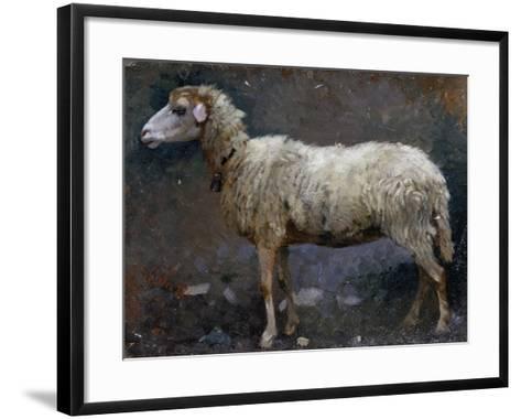 Sheep in Profile-Stefano Bruzzi-Framed Art Print