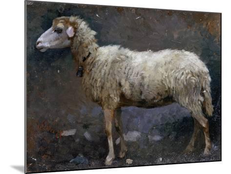 Sheep in Profile-Stefano Bruzzi-Mounted Giclee Print