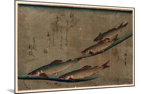 Ayu Zu-Utagawa Hiroshige-Mounted Giclee Print