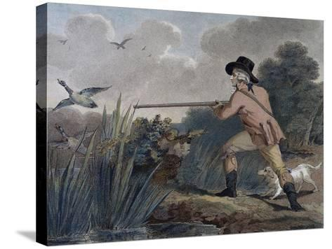 Duck Hunting, 1790-Thomas Simpson-Stretched Canvas Print