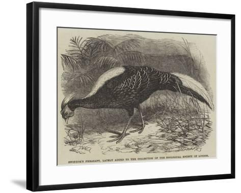 Swinhoe's Pheasant, Lately Added to the Collection of the Zoological Society of London-Thomas W. Wood-Framed Art Print