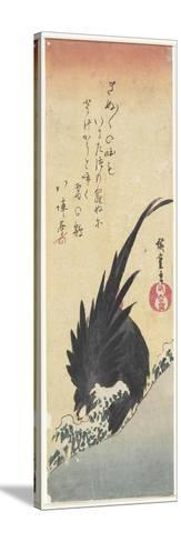 Rooster, Early 19th Century-Utagawa Hiroshige-Stretched Canvas Print