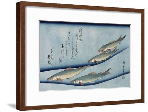 Rivertrout', from the Series 'Collection of Fish'-Utagawa Hiroshige-Framed Art Print