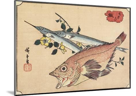 Rockfish and Halfbeak, Early 19th Century-Utagawa Hiroshige-Mounted Giclee Print