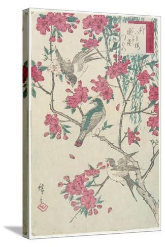 Willow, Cherry Blossoms, Sparrows and Swallow, Early 19th Century-Utagawa Hiroshige-Stretched Canvas Print