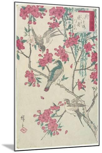 Willow, Cherry Blossoms, Sparrows and Swallow, Early 19th Century-Utagawa Hiroshige-Mounted Giclee Print