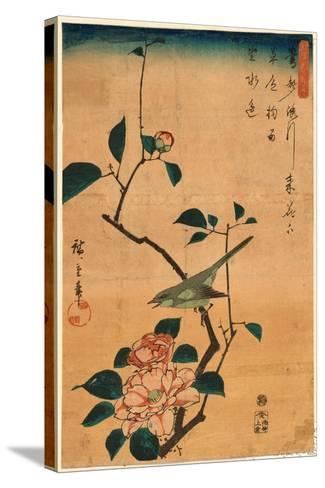 Tsubaki Ni Uguisu-Utagawa Hiroshige-Stretched Canvas Print