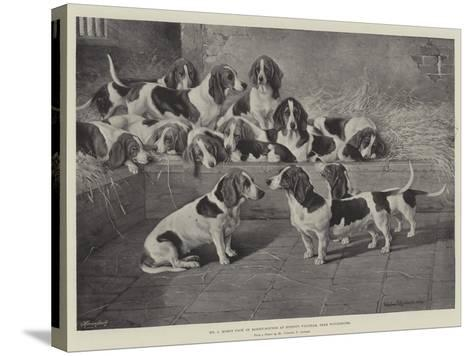 Mr J Moss's Pack of Basset-Hounds at Bishops Waltham, Near Winchester-Valentine Thomas Garland-Stretched Canvas Print
