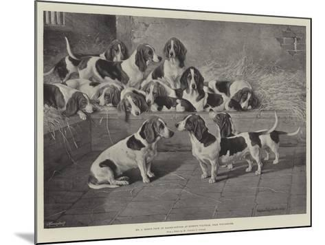 Mr J Moss's Pack of Basset-Hounds at Bishops Waltham, Near Winchester-Valentine Thomas Garland-Mounted Giclee Print