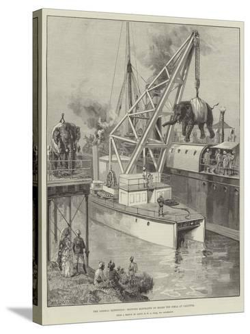 The Looshai Expedition, Shipping Elephants on Board the Simla at Calcutta-William Heysham Overend-Stretched Canvas Print