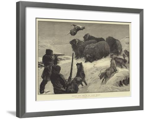 Shooting Musk Oxen in the Arctic Regions-William Heysham Overend-Framed Art Print