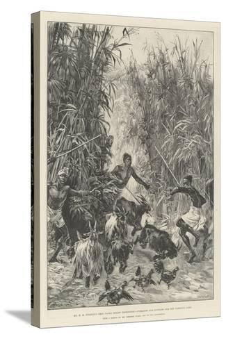 Mr H M Stanley's Emin Pasha Relief Expedition, Foraging for Supplies for the Yambuya Camp-William Heysham Overend-Stretched Canvas Print