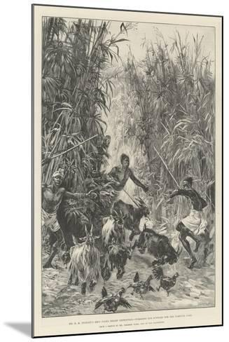 Mr H M Stanley's Emin Pasha Relief Expedition, Foraging for Supplies for the Yambuya Camp-William Heysham Overend-Mounted Giclee Print
