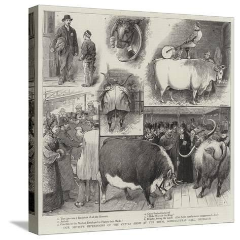 Our Artist's Impressions of the Cattle Show at the Royal Agricultural Hall, Islington-William Ralston-Stretched Canvas Print