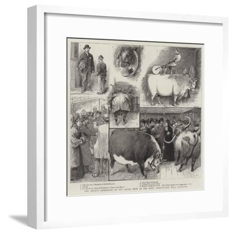 Our Artist's Impressions of the Cattle Show at the Royal Agricultural Hall, Islington-William Ralston-Framed Art Print