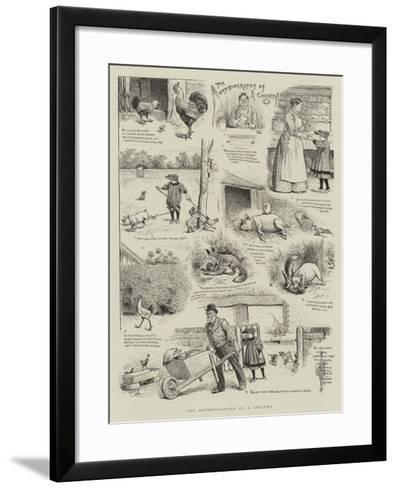 The Autobiography of a Chicken-William Ralston-Framed Art Print