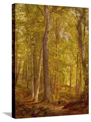 June Woods, Pennsylvania, 1864-William Trost Richards-Stretched Canvas Print