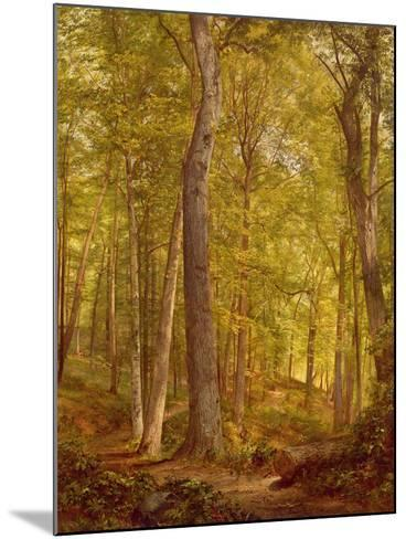 June Woods, Pennsylvania, 1864-William Trost Richards-Mounted Giclee Print