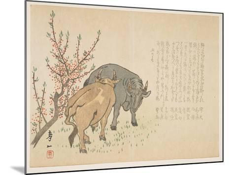 Oxen, January 1853-Yoshimura K?iitsu-Mounted Giclee Print
