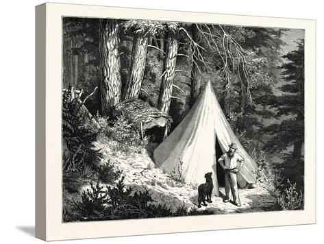 A Summer Encampment in a North Pacific Forest: Copper Mountain--Stretched Canvas Print