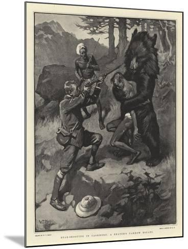 Bear-Shooting in Cashmere, a Beater's Narrow Escape-William T^ Maud-Mounted Giclee Print