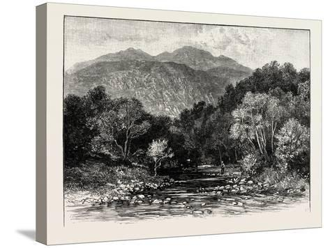 Ben Lomond: the Trossachs and Ben Venue--Stretched Canvas Print