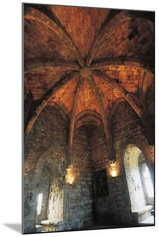 Ceiling of Musicians Hall--Mounted Photographic Print