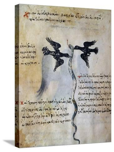 Depiction of Constantinople Between Two Ravens--Stretched Canvas Print