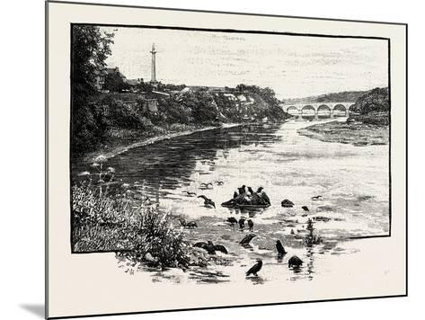 Coldstream Bridge--Mounted Giclee Print