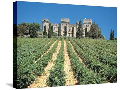 Crop in Front of a Castle--Stretched Canvas Print