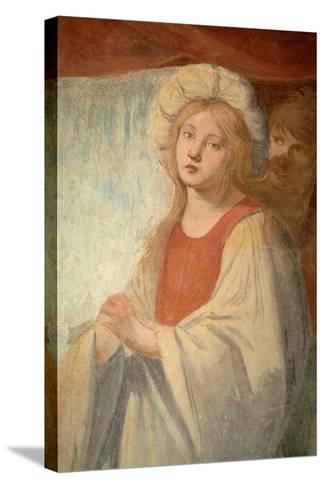 Female Figure--Stretched Canvas Print