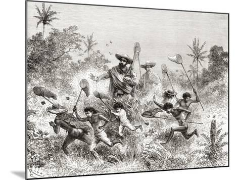 Édouard François André Catching Butterflies in Villavicencio--Mounted Giclee Print