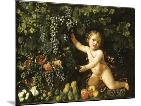 Grapes on the Vine--Mounted Giclee Print