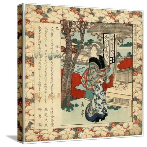 Mi Ikenohata--Stretched Canvas Print