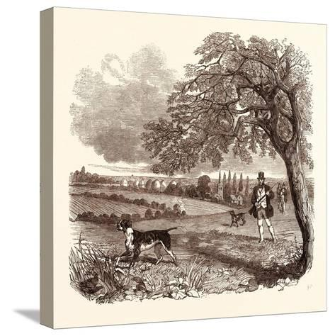 Partridge Shooting in September. Shotgun--Stretched Canvas Print