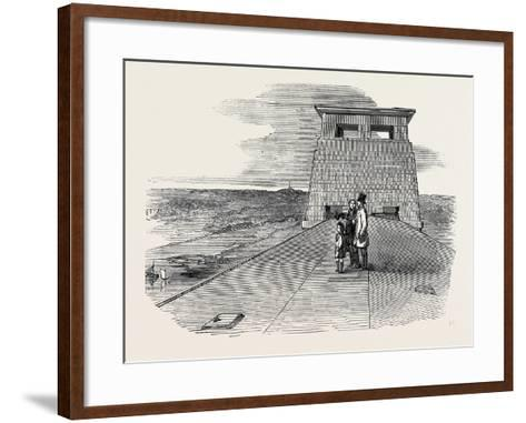 Prince Albert--Framed Art Print