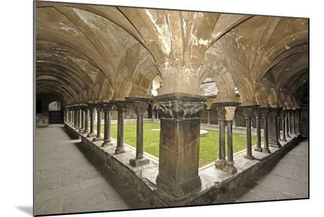 Romanesque Cloister (Built Circa 1133 and Renovated in 15th Century) of Collegiate Church of Saint--Mounted Photographic Print