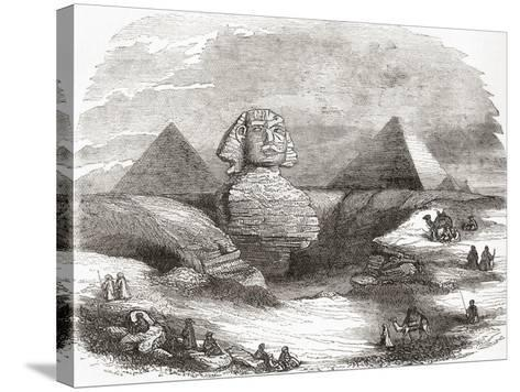 The Great Sphinx of Giza--Stretched Canvas Print