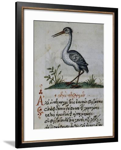 Treatise on Crane--Framed Art Print