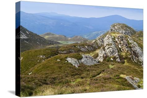 Welsh Upland Mountain Landscape: Pared Y Cefn-Hir--Stretched Canvas Print