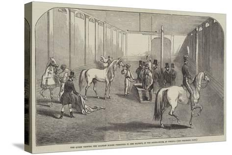 The Queen Viewing the Arabian Horses Presented to Her Majesty, in the Riding-House, at Pimlico--Stretched Canvas Print