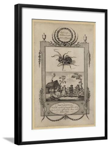 The Tarantula, with the Method of Curing Those Stung by It, Which Is Effected by Music and Dancing--Framed Art Print