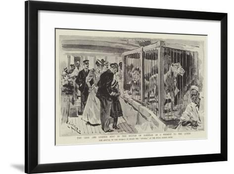 The Lion and Lioness Sent by the Sultan of Zanzibar as a Present to the Queen--Framed Art Print